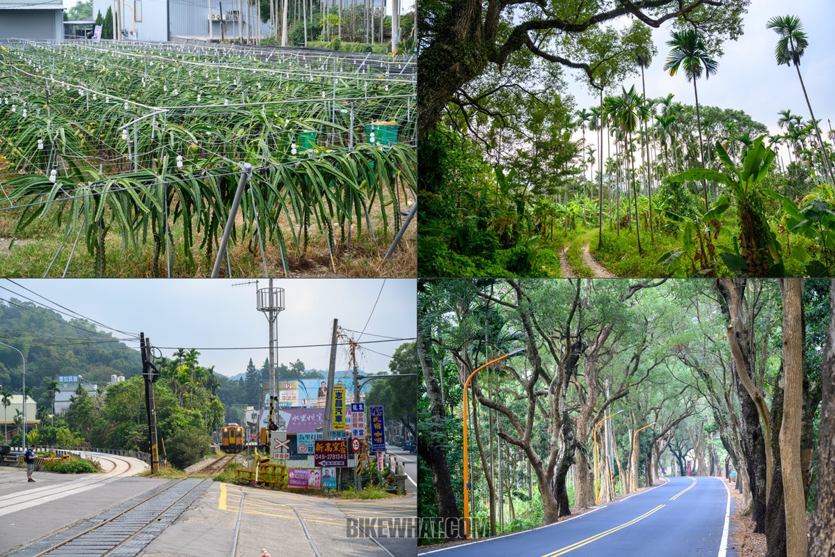 tour_taiwan_52.jpg