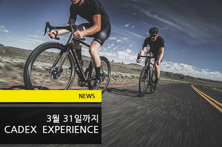 news_CADEX EXPERIENCE_tl.jpg